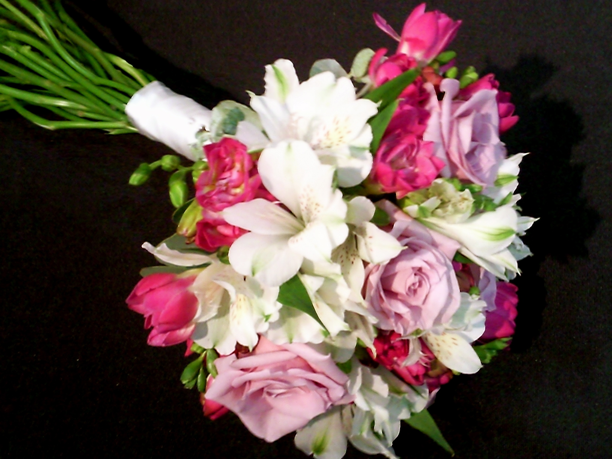 roses & freesias